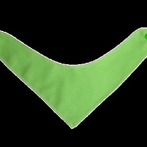 Rutka slinko - zelena